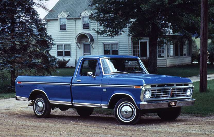 Ford F100 #8052717