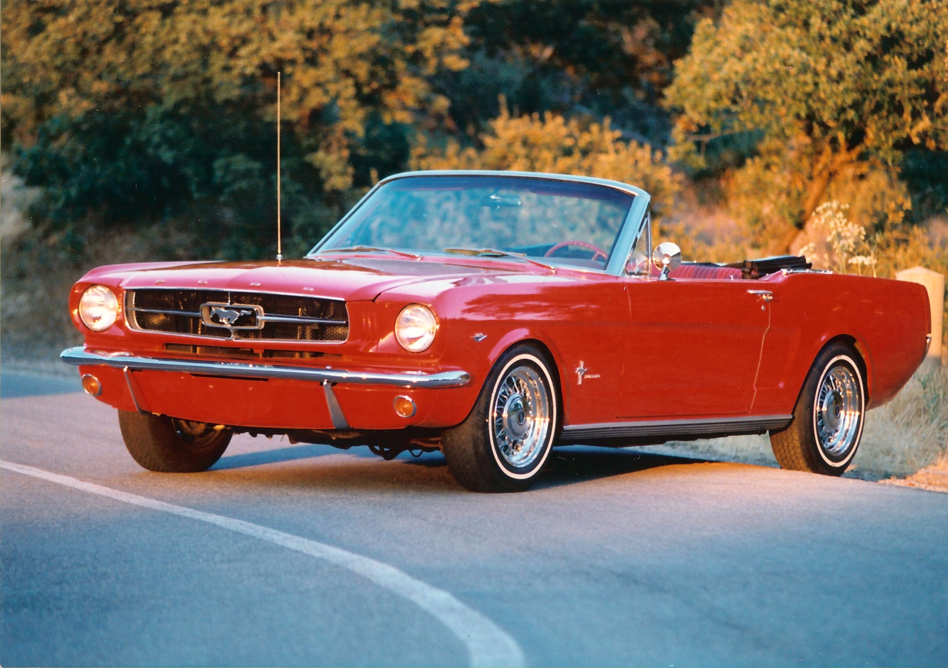 Ford Mustang Cabrio #8631009