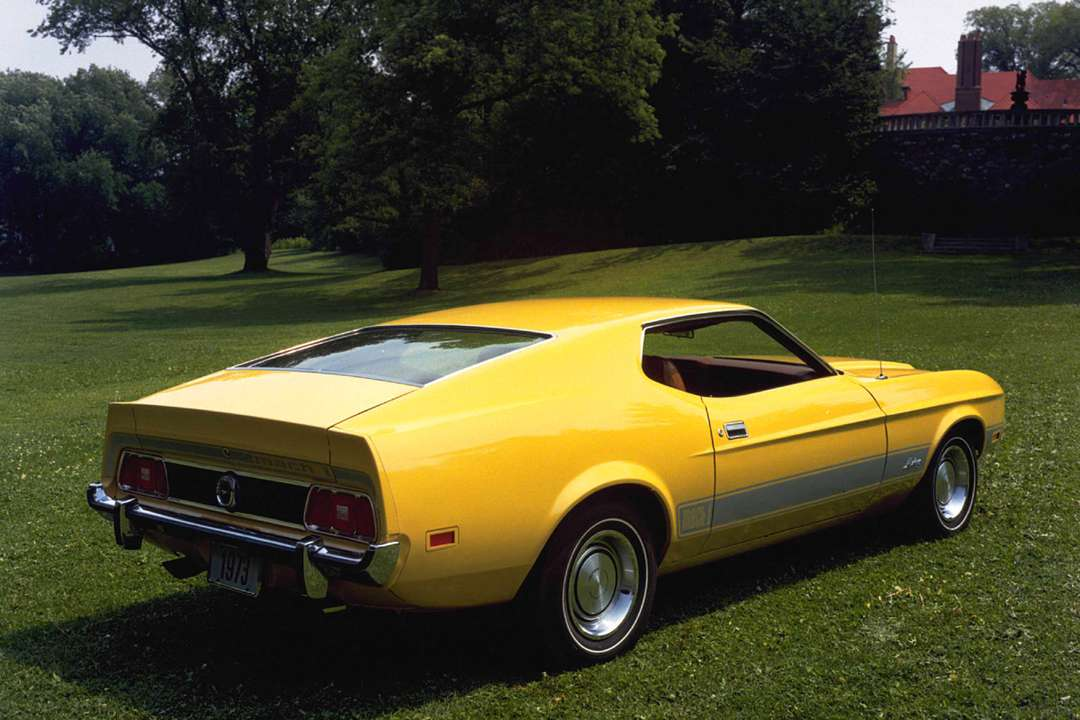 Ford Mustang Mach 1 #7366844