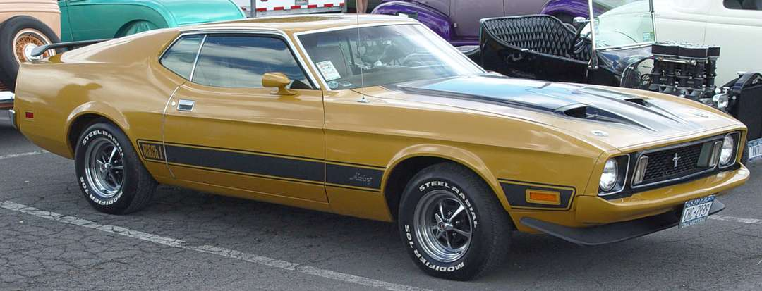 Ford Mustang Mach 1 #9938986