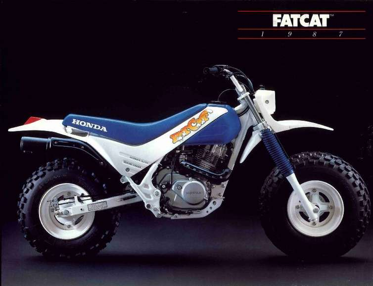 Honda Fat Cat #9046395
