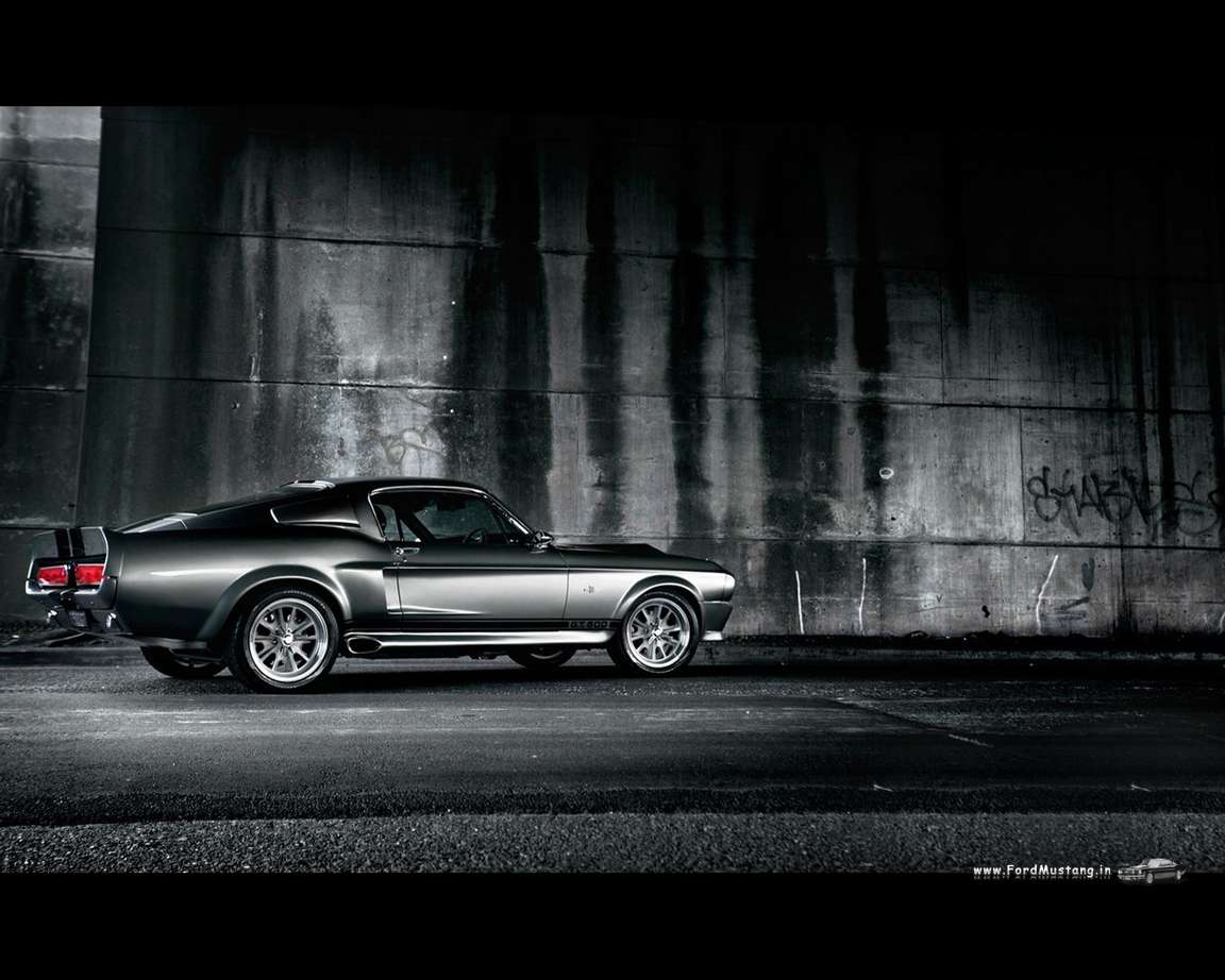 Shelby GT500 #8803034