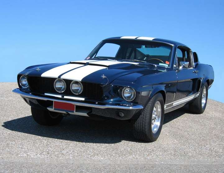 Shelby GT350 #8481170