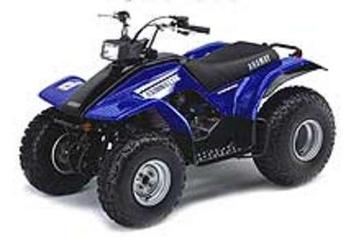 Yamaha Breeze #8239164
