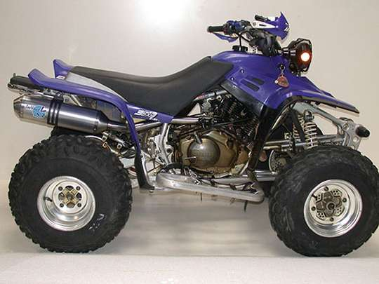 Yamaha Warrior 350 #7818196