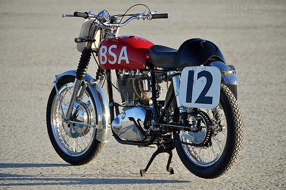 BSA Gold Star #8962079