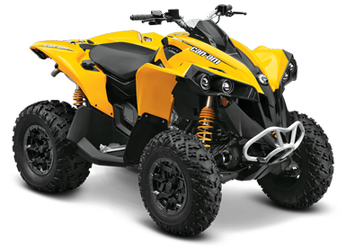 Can-Am Renegade #8684296
