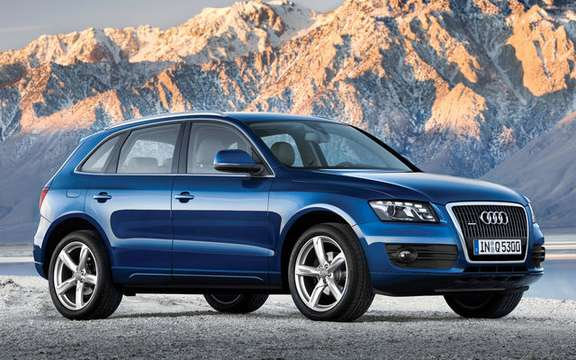 Audi Q5 finally unveiled picture #3