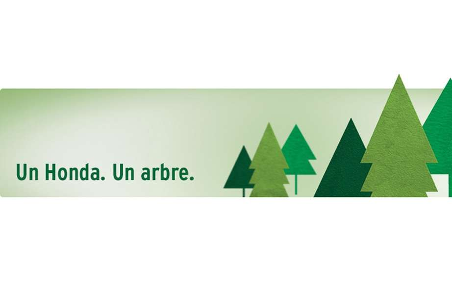 """A Honda. A tree. ""Canadian countryside planting 18,000 trees picture #1"