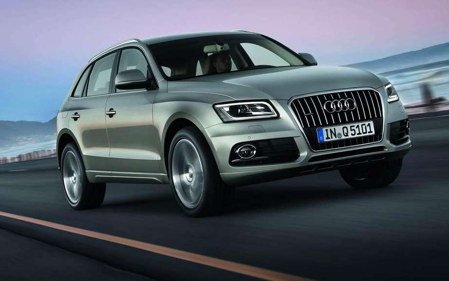Audi Q5 2013 or Charlie? picture #1