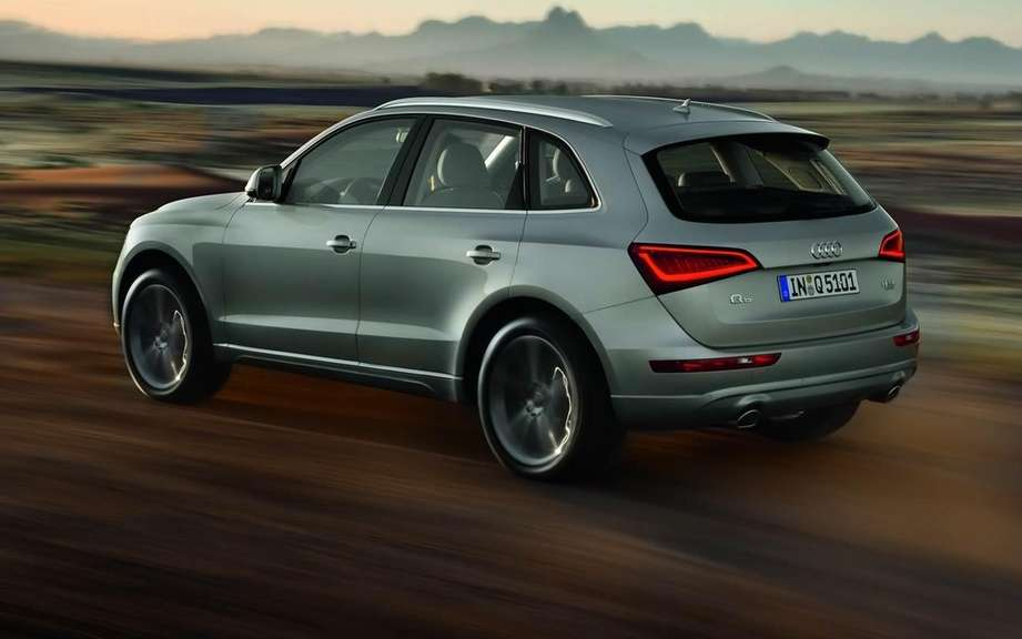 Audi Q5 2013 or Charlie? picture #2