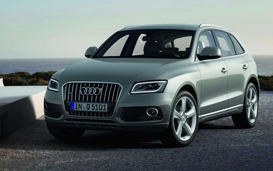 Audi Q5 2013 or Charlie? picture #3