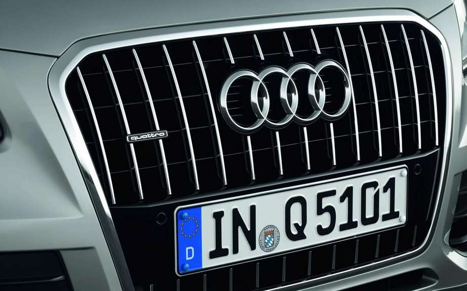 Audi Q5 2013 or Charlie? picture #4