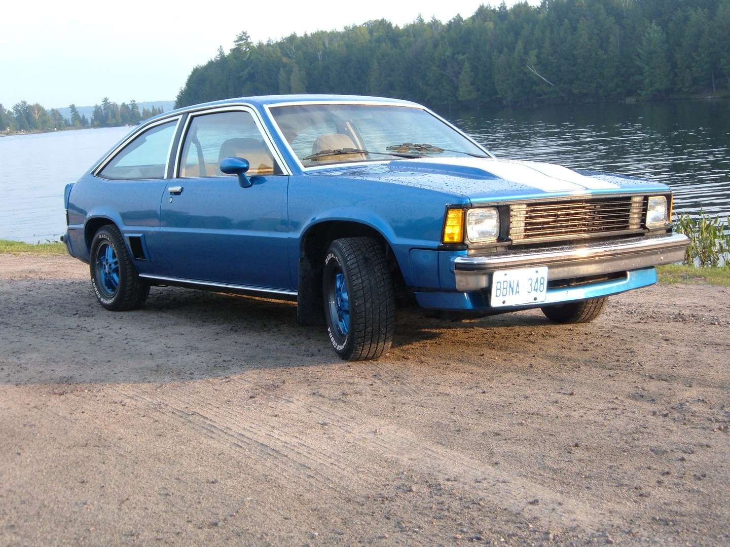 Chevrolet Citation #8720923
