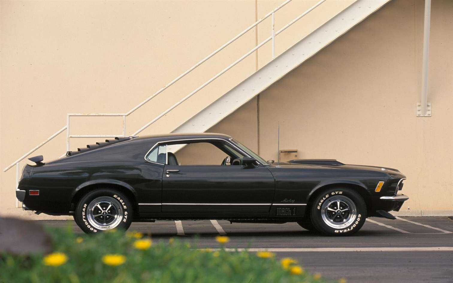 Ford Mustang Mach 1 #7372092