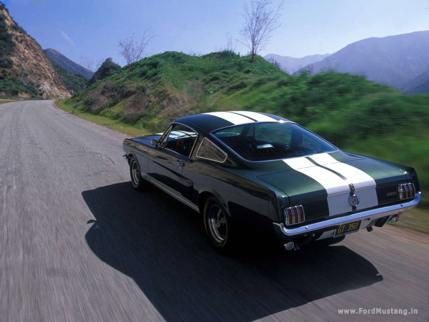 Shelby GT350 #9373807
