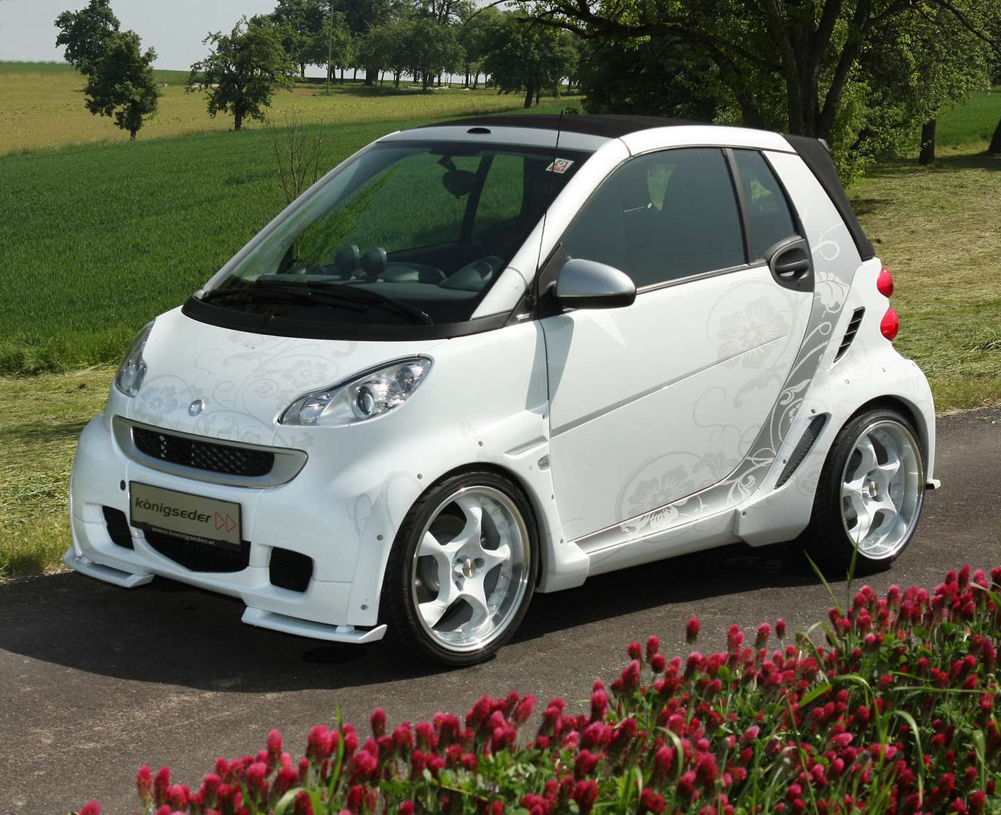 smart Fortwo #9925966
