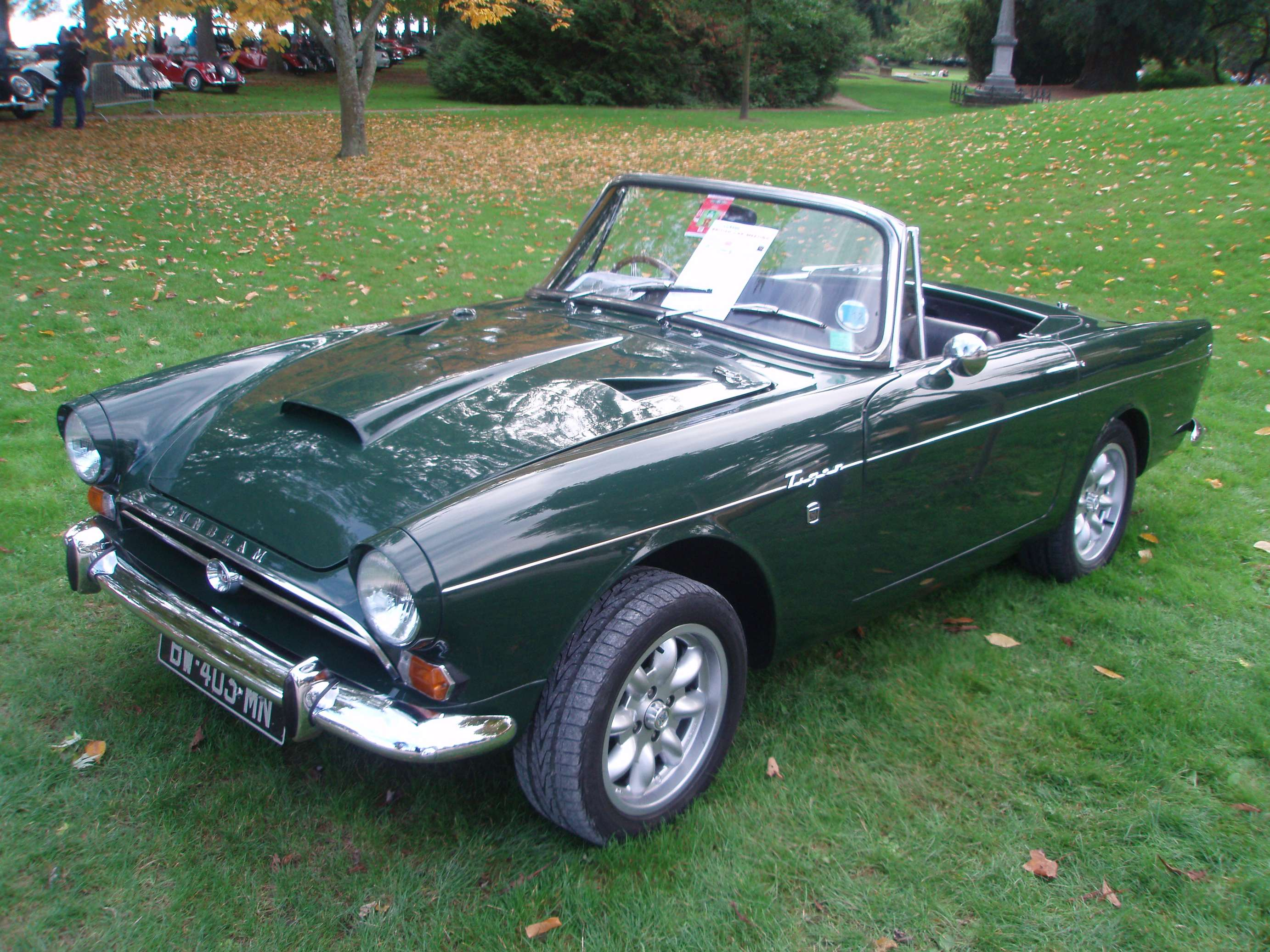 Sunbeam Tiger #8338692